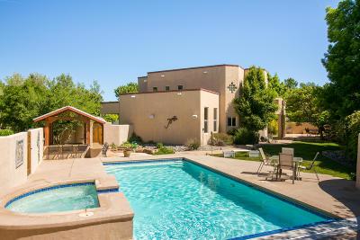 Albuquerque Single Family Home For Sale: 2604 Bosque Del Sol Lane NW