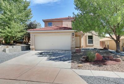 Albuquerque Single Family Home For Sale: 10612 Vista Bella Place NW