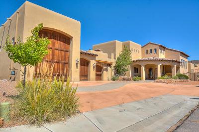 Albuquerque Single Family Home For Sale: 10409 Los Suenos Court