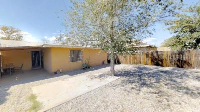 Single Family Home For Sale: 512 Girard Boulevard SE