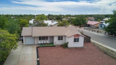 Albuquerque Single Family Home For Sale: 10036 Benavides Road SW