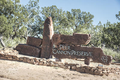 Single Family Home For Sale: 1787 Deer Canyon Trail