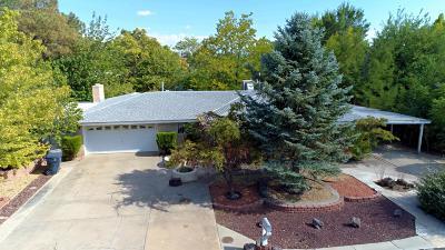 Albuquerque Single Family Home Active Under Contract - Short : 4606 Sorrel Lane SW