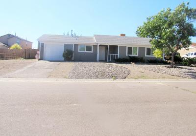 Rio Rancho Single Family Home For Sale: 663 Orchid Drive SW