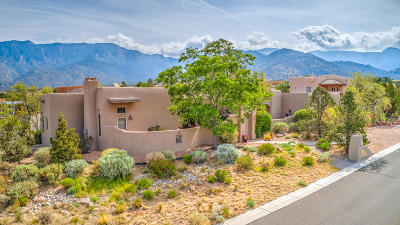 Albuquerque Single Family Home For Sale: 6216 Fringe Sage Court NE