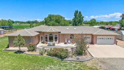 Valencia County Single Family Home For Sale: 91 Valencia Road