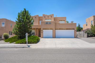 Rio Rancho Single Family Home For Sale: 5048 Night Hawk Drive NE