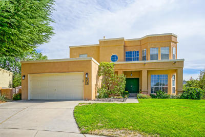 Albuquerque Single Family Home For Sale: 9332 Mabry Avenue NE