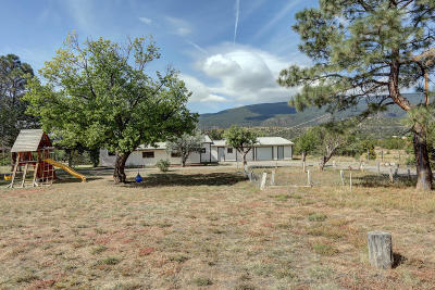 Tijeras, Cedar Crest, Sandia Park, Edgewood, Moriarty, Stanley Single Family Home For Sale: 204 Rincon Loop