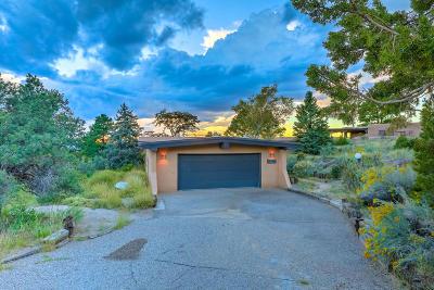 Albuquerque Single Family Home For Sale: 105 Juniper Hill Road NE
