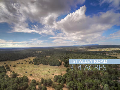 Bernalillo County Residential Lots & Land For Sale: 151 Alley Road