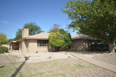 Roswell Single Family Home For Sale: 3100 Encanto Drive