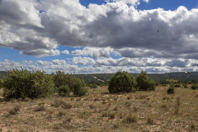 Bernalillo County Residential Lots & Land For Sale: Highway 217