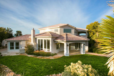 Albuquerque Single Family Home For Sale: 11520 San Bernardino Avenue NE