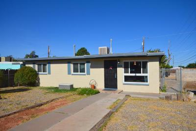 Albuquerque Single Family Home For Sale: 1331 General Somervell Street NE