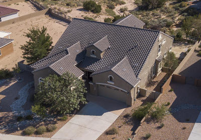 Rio Rancho Single Family Home For Sale: 2504 Desert View Road NE