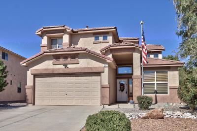 Rio Rancho Single Family Home For Sale: 2413 Anitori Road SE