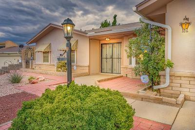 Rio Rancho Single Family Home For Sale: 671 Campfire Road SE