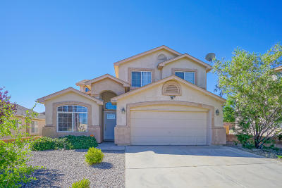 Albuquerque Single Family Home For Sale: 9908 Sun Chaser Trail SW