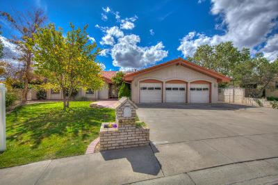 Albuquerque Single Family Home For Sale: 9408 Pebble Beach Drive NE