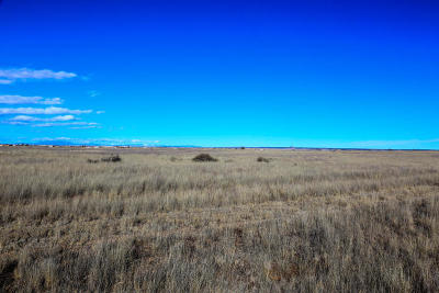 Torrance County Residential Lots & Land For Sale: 13 Lasso Loop