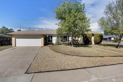 Albuquerque Single Family Home For Sale: 6109 Bellamah Avenue NE