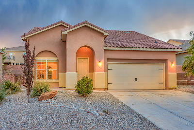 Rio Rancho Single Family Home For Sale: 6910 Wrangell Loop NE