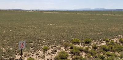 Torrance County Residential Lots & Land For Sale: 16 Windswept Road