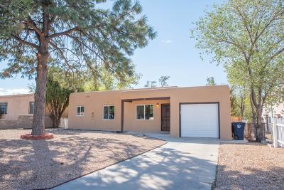 Albuquerque Single Family Home For Sale: 617 Girard Boulevard SE