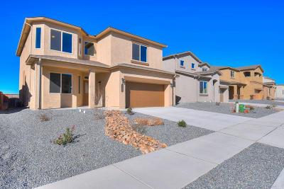 Rio Rancho Single Family Home For Sale: 1151 Grace Street NE