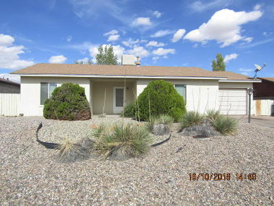Rio Rancho Single Family Home For Sale: 1640 Domain Loop SE
