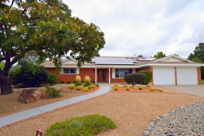 Albuquerque Single Family Home For Sale: 1419 Catron Avenue