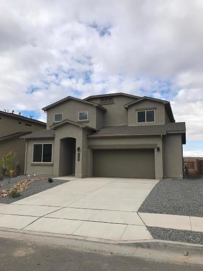 Rio Rancho Single Family Home For Sale: 1163 Grace Street NE
