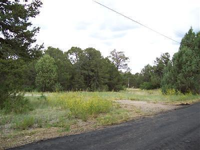 Bernalillo County Residential Lots & Land For Sale: 37 Bobolink Lane