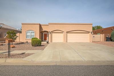 Rio Rancho Single Family Home For Sale: 3941 Augusta Drive SE