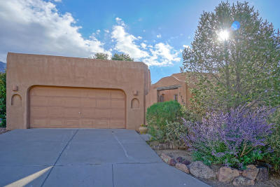 Bernalillo County Single Family Home For Sale: 7720 Cedar Canyon Court NE