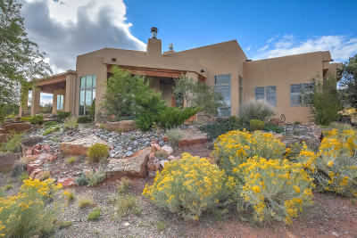 Bernalillo, Placitas Single Family Home For Sale: 110 Buffalo Ridge Court