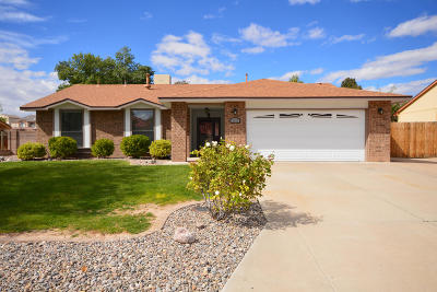 Rio Rancho Single Family Home For Sale: 1717 Savannah Drive NE