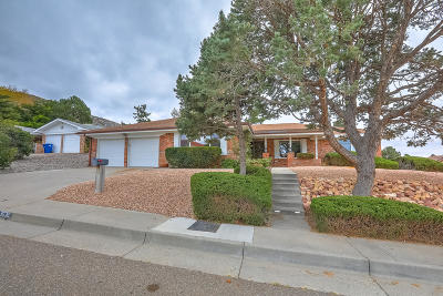 Albuquerque Single Family Home For Sale: 3036 Ole Court NE
