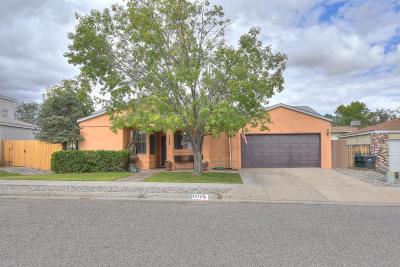 Rio Rancho Single Family Home For Sale: 1375 Golden Eye Loop NE