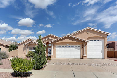 Rio Rancho Single Family Home For Sale: 3824 Spyglass Loop SE