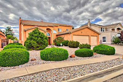 Rio Rancho Single Family Home For Sale: 3880 Bay Hill Loop SE