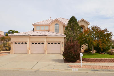 Albuquerque NM Single Family Home For Sale: $675,000
