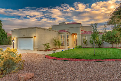 Rio Rancho Single Family Home For Sale: 3546 Newcastle Drive SE