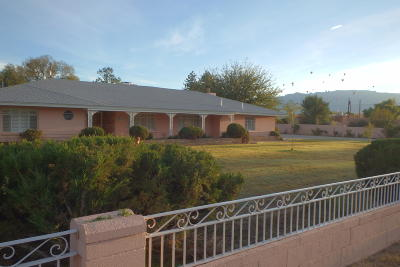 Bernalillo County Single Family Home For Sale: 505 Tyler Road NW