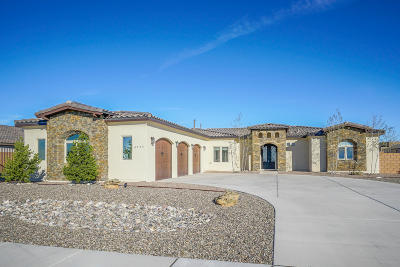 Albuquerque Single Family Home For Sale: 6535 Vista Del Prado Road NW