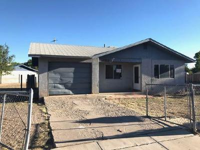 Los Lunas Single Family Home For Sale: 452 Carson Drive SE