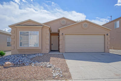 Albuquerque Single Family Home For Sale: 6904 Paese Place NW