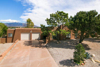 Albuquerque Single Family Home For Sale: 1312 Kentucky Street SE