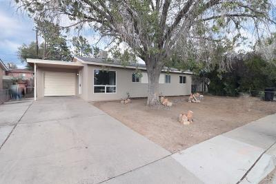 Albuquerque Single Family Home For Sale: 10605 Walker Drive NE
